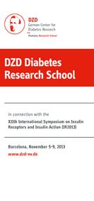 dzd diabetes research school 2020 izle